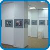 Фотографии с выставки. 2008-ой год.